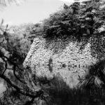 「荒城の月」誕生のロマンを秘めた日本庭園を