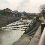 いたち川の〝ドンドコ〟(富山市)